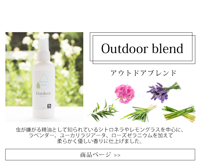 Outdoor blend 100ml