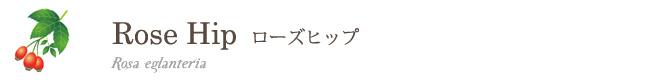 ローズヒップ(精製)